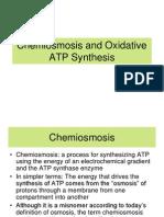 6.1 Chemiosmosis and Oxidative ATP Synthesis
