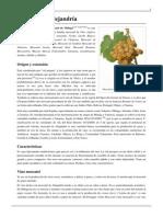Moscatel de Alejandría.pdf-03