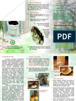 Biofungicide for the control of plant diseases caused by Ganoderma, Rigidoporus lignosus, and Phytophthora palmivora