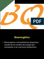1_Bioenergetica