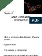 Genetics Chapter 10
