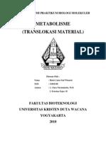 Biologi Molekuler - Metabolisme (Translokasi Material)