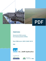 Peat CO2 Report