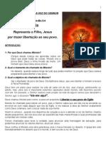 2ªAULA-FEV08