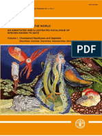 Cephalopods of the World Vol.1 Chambered Nautiluses and Sepioids