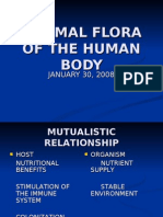 NORMAL FLORA OF THE HUMAN BODY