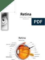 Retina.pptx