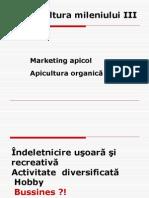IMAPA Marketing Apicol (1)