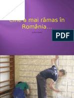 Cine a mai rămas în România