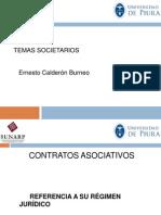 Diap_1_Contratos_Asociativos