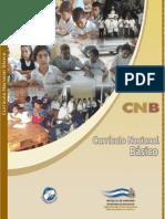 Curriculm Nacional Basico