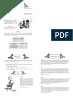 Dszikie Pola d20 Modified_booklet