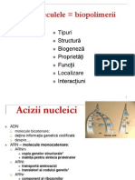 Curs 1 Acizi Nucleici. Proteine