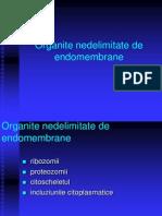 Organite Nedelimitate de Endomembrane