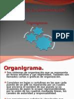 Tipos de Organigrama