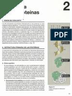Proteinas_Champee_Capitulo_2_5_edicion.pdf