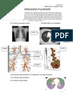 CM1.Parenquima pulmonar