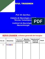 V. Nervul Trigemen