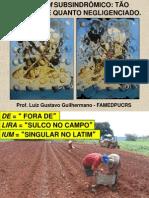 DELIRIUM PG GERIATRIA JANEIRO 2014.pdf