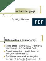 Metabolismul acizilor graşi