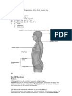 T1 Organization of BodyQAStudent Revised