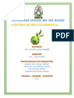 AUDITORIA AMBIENTAL2