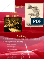 Introduction Anatomy