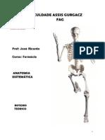 Roteiro Teórico Anatomia Sistemática Farmacia