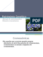 Património Genético (Mutações cromossómicas)