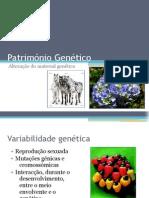 Património Genético (Mutações génicas)