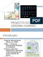 Projecto Do Genoma Humano