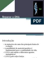 Reparar o DNA