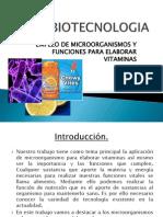 II PARCIAL 3° CLASE  -EMPLEO DE MICROORGANISMOS Y  FUNCIONES PARA ELABORAR VITAMINAS.docx
