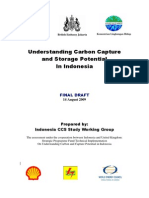 Ccs Potential Indonesia