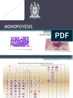 MONOPOYESIS