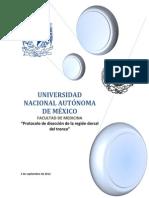 Protocolo Anatomia (4)