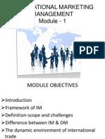 Imm Module -1