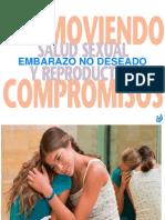 Embarazo No Deseado y Aborto en Condiciones de Riesgos