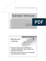 Canais_Ionicos