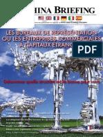 Les Bureaux de Representation ou les Entreprises Commerciales a Capitaux Etrangers