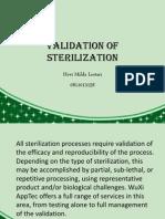 Validation of Sterilization - Hevi Milda Lestari 0811013158