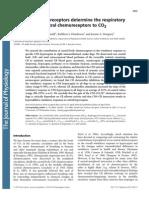 Peripheral chemoreceptors determine the respiratory sensitivity of central chemoreceptors to CO2.pdf