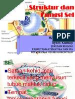 02. Struktur Dan Fungsi Sel