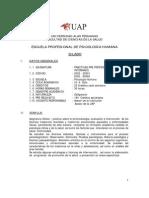IX - X - Prácticas Pre - Profesionales _Internado_