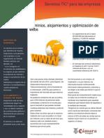 Dominios y optimización de webs.