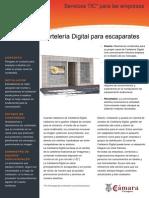 Sistemas de Marketing Dinámico.