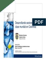 Desarrollando Sectopres Talla Mundial Cosmeticos Aseo Absorbentes 2010.pdf