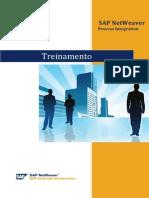 Treinamento PI v1.1.docx