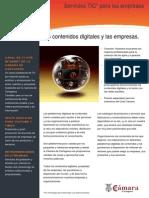 Los contenidos digitales y las empresas.