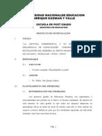 Proyecto de Investigacion La Cantuta Vicente